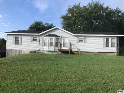 Parma Single Family Home Contingent - Financing: 9550 Springport Rd