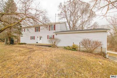 Cement City MI Single Family Home For Sale: $169,900