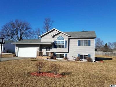 Jackson Single Family Home For Sale: 1308 Catsyl