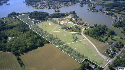 Onsted MI Residential Lots & Land For Sale: $250,000