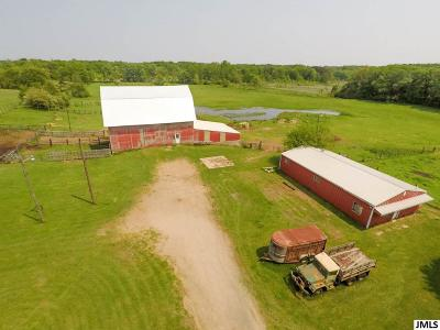 Jackson MI Residential Lots & Land For Sale: $249,900