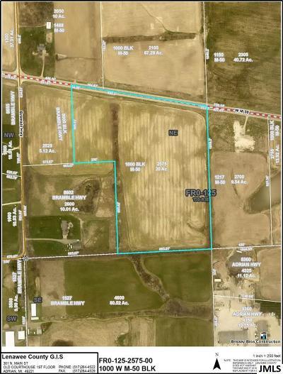 Tecumseh MI Residential Lots & Land For Sale: $130,000
