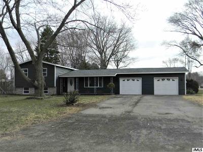 Michigan Center Single Family Home Contingent - Financing: 127 Cecilia Dr