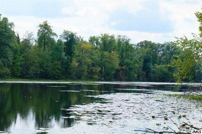 Clarklake Residential Lots & Land For Sale: 11005 Patch