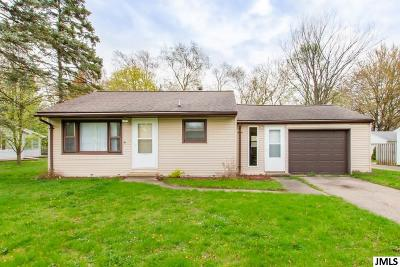 Spring Arbor Single Family Home For Sale: 3519 Henderson Rd