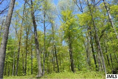 Parma MI Residential Lots & Land For Sale: $60,000