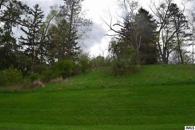 Grass Lake MI Residential Lots & Land For Sale: $89,900