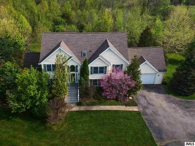 Spring Arbor Single Family Home For Sale: 7294 Monarch Dr