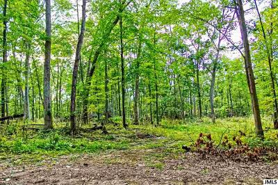 Horton MI Residential Lots & Land For Sale: $108,000