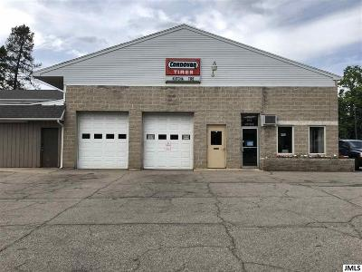 Jackson MI Commercial/Industrial For Sale: $225,000