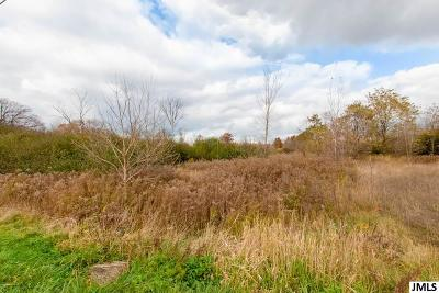 Jackson County, Lenawee County, Hillsdale County, Washtenaw County Residential Lots & Land For Sale: McCain Rd
