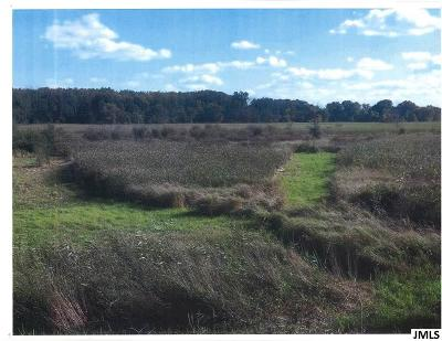 Jackson MI Residential Lots & Land For Sale: $74,900