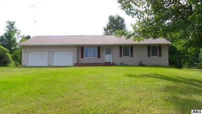 Albion Single Family Home Contingent - Financing: 16172 28 Mile Rd