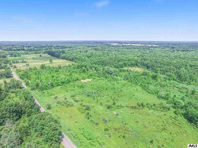 Onondaga MI Residential Lots & Land For Sale: $269,900