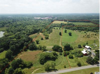 Jackson MI Residential Lots & Land For Sale: $214,900
