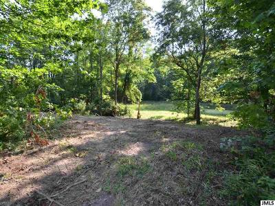 Spring Arbor Residential Lots & Land For Sale: S Dearing Rd