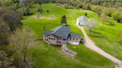 Cement City MI Single Family Home For Sale: $675,000