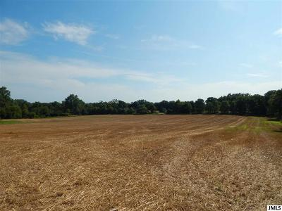 Jackson MI Residential Lots & Land For Sale: $222,000