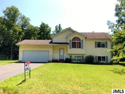 Parma Single Family Home For Sale: 7949 Village Green Ln