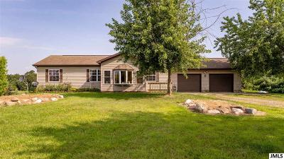 Hanover MI Single Family Home For Sale: $215,000