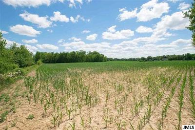 Jackson MI Residential Lots & Land For Sale: $289,900
