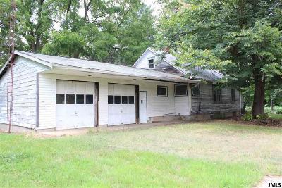 Concord MI Single Family Home For Sale: $300,000