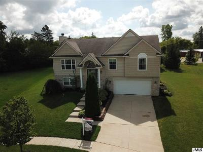 Lenawee County Single Family Home For Sale: 517 Edward J