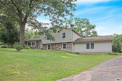 Jackson MI Single Family Home For Sale: $289,000