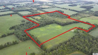 Litchfield MI Residential Lots & Land For Sale: $270,000