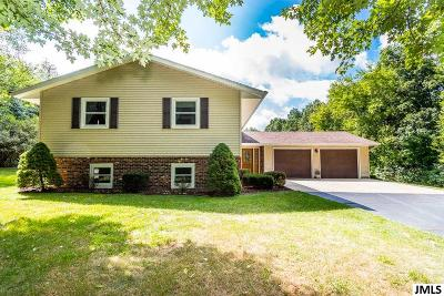 Cement City MI Single Family Home For Sale: $285,000