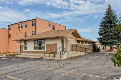Jackson Commercial/Industrial For Sale: 823 E Michigan Ave