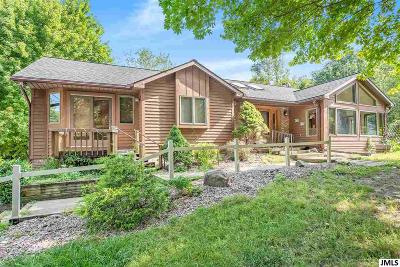 Brooklyn Single Family Home For Sale: 12640 Horning Rd