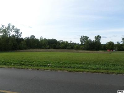 Brooklyn MI Residential Lots & Land For Sale: $80,000