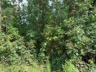 Parma MI Residential Lots & Land For Sale: $45,000