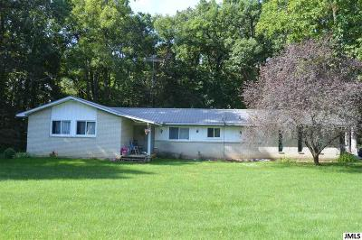 Onsted MI Single Family Home For Sale: $189,900