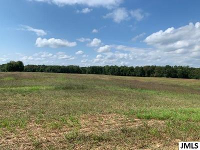 Rives Junction MI Residential Lots & Land For Sale: $243,000