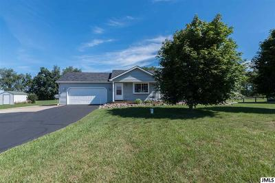 Grass Lake Single Family Home For Sale: 11520 Warrior Trail