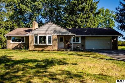 Jackson Single Family Home For Sale: 7990 Stoney Lake Rd