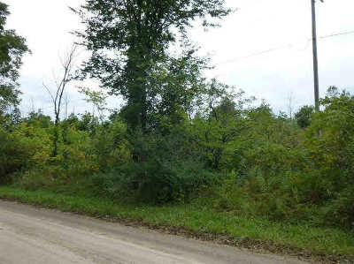 Ann Arbor MI Residential Lots & Land For Sale: $260,000