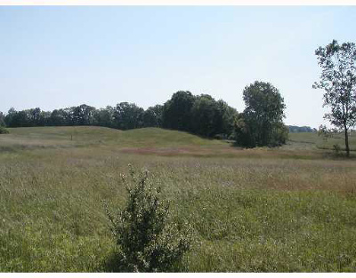 Munith MI Residential Lots & Land For Sale: $59,900
