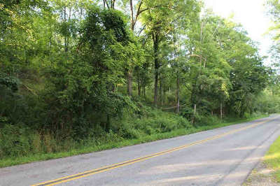 Jackson County, Lenawee County, Hillsdale County, Washtenaw County Residential Lots & Land For Sale: Huron River Dr