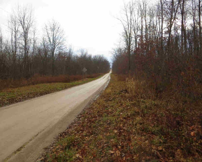 Addison MI Residential Lots & Land For Sale: $55,000