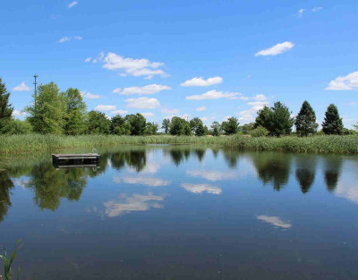 Clinton MI Residential Lots & Land For Sale: $365,000