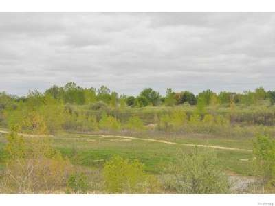 Jackson County, Lenawee County, Hillsdale County, Washtenaw County Residential Lots & Land For Sale: Moon Rd