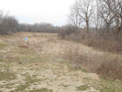 Ann Arbor MI Residential Lots & Land For Sale: $1,350,000