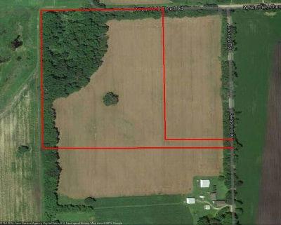 Ann Arbor MI Residential Lots & Land For Sale: $297,000