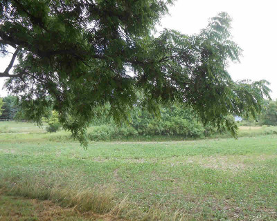Chelsea MI Residential Lots & Land For Sale: $1,175,000