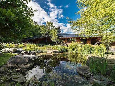 Ann Arbor Single Family Home For Sale: 6463 Warren Rd