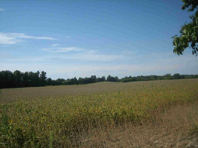 Hillsdale County Residential Lots & Land For Sale: North Adams Rd