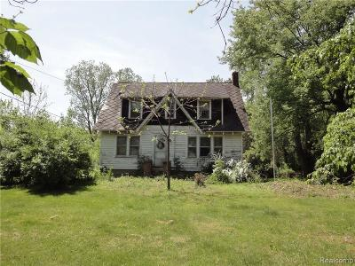 Belleville Single Family Home For Sale: 9746 Rawsonville Rd